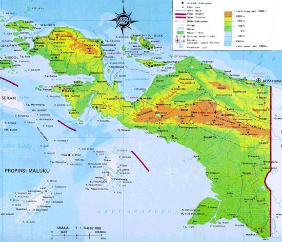 German Firm To Invest 900m In West Papua News Embassy